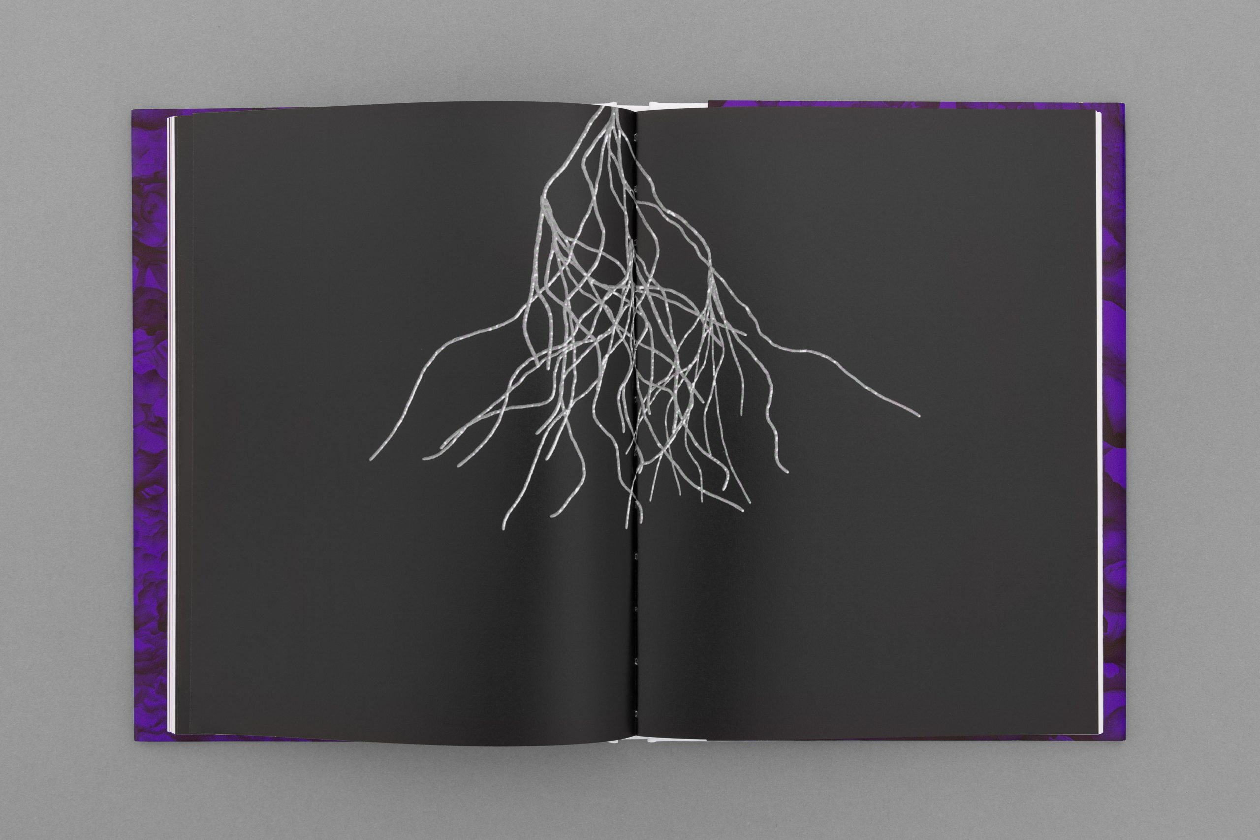 João M. Machado – Diana Policarpo – Nets of Hyphae (9 of 15)