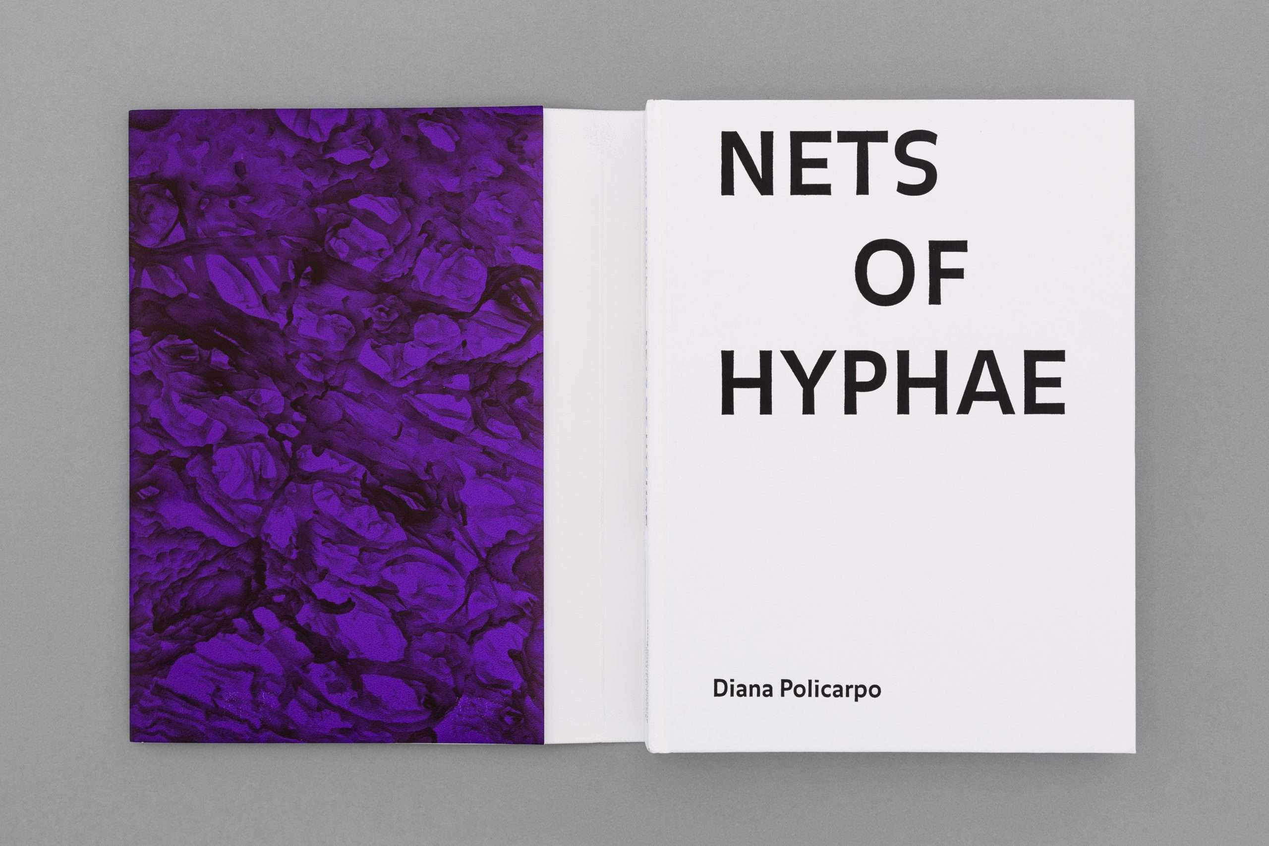 João M. Machado – Diana Policarpo – Nets of Hyphae (2 of 15)
